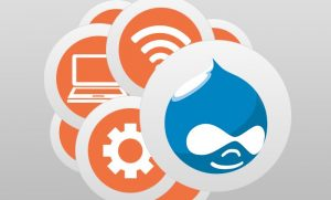Top vetting questions for outsourcing to a Drupal development agency
